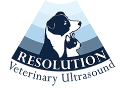 rvus logo